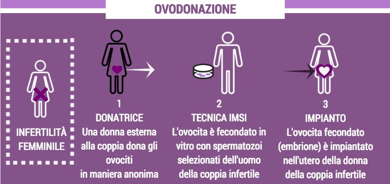fecondazione eterologa infografica 4